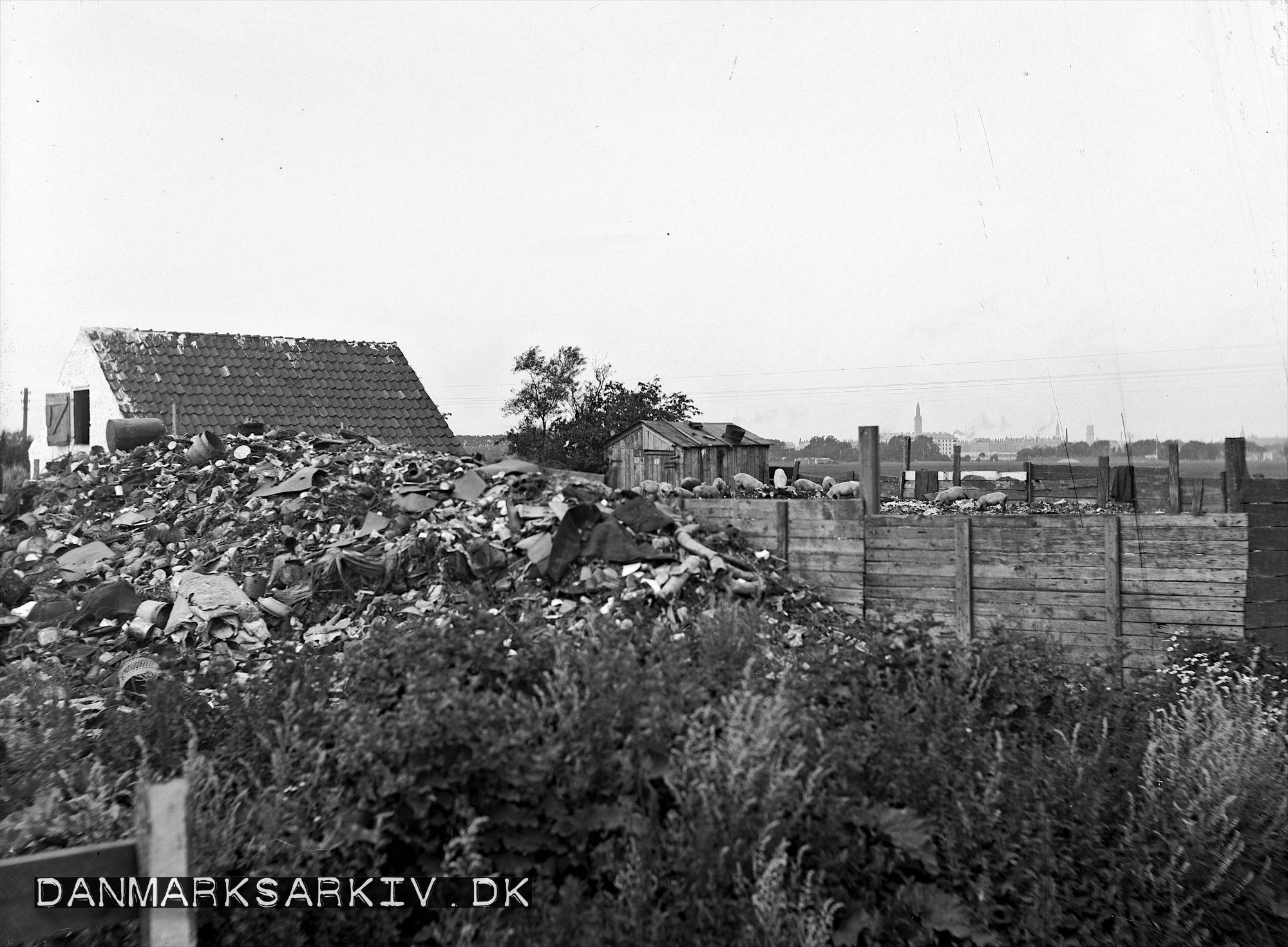 Affaldsdynger på Sundholm - 1907